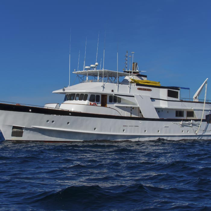 Galapagos Cruises and Tours