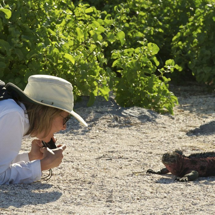 Galapagos Land Based Packages & Cruises