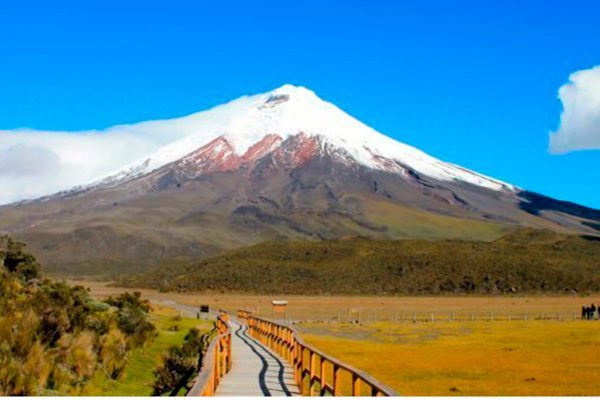 Custom Ecuador and Galapagos Trips