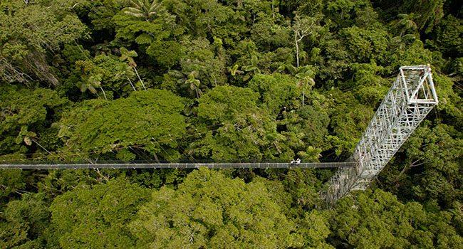 Ecuador Amazon activities