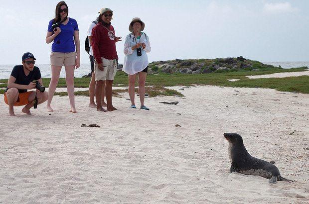 Galapagos 8 day cruise tours