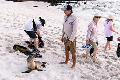 Activities during a trip to the Galapagos