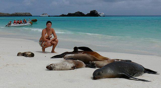 Galapagos islands credit cards or cash