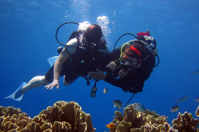 Scuba in the Galapagos islands Diving