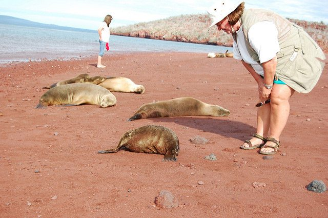 Things to know for a trip to Galapagos