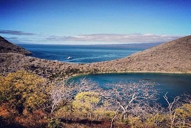 Galapagos in January