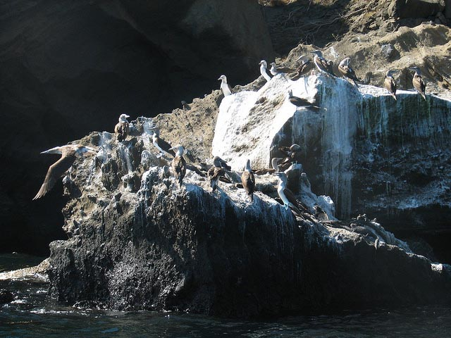 Galapagos Islands Travel in May