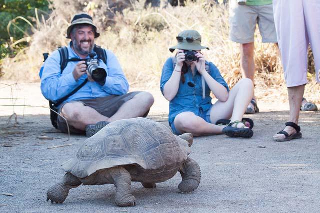 June in Galapagos wildlife weather