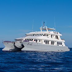 Luxury Galapagos Cruise Charters