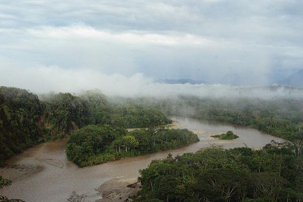 Amazon Rainforest when to go