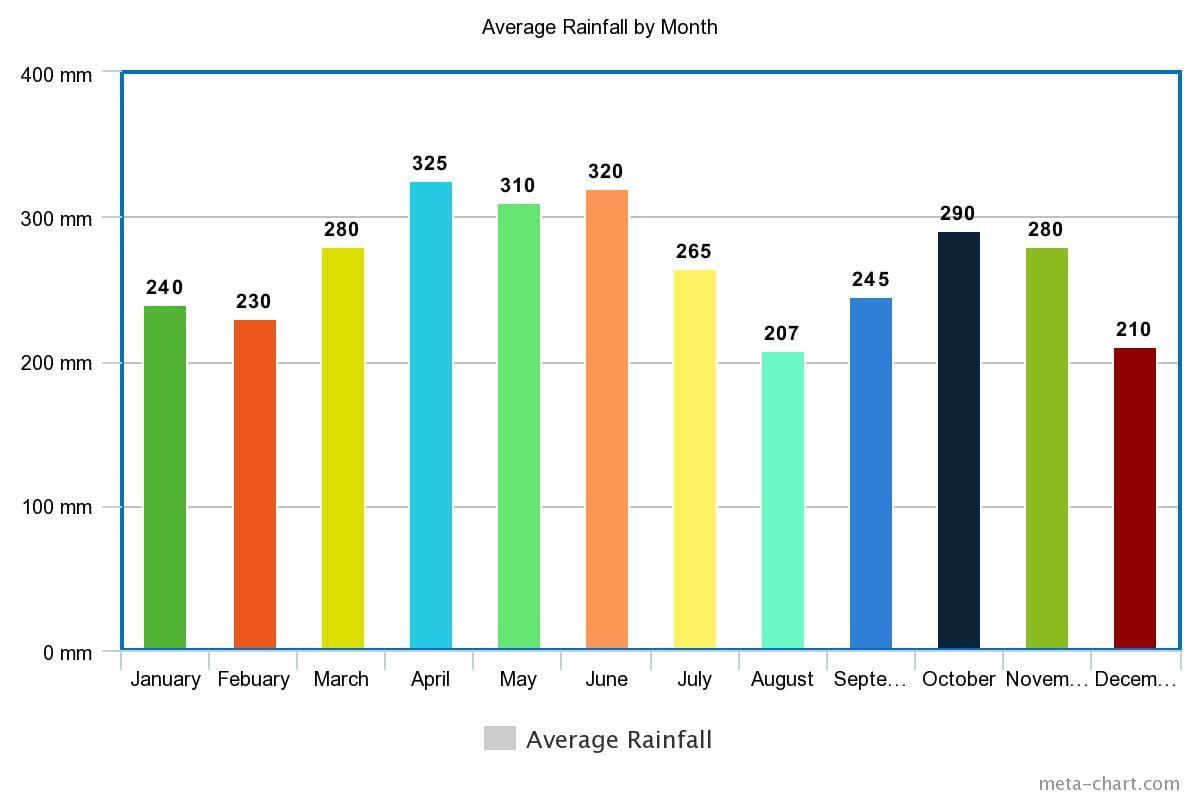 Amazon Rainforest of Ecuador Rainfall