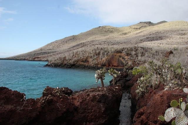 Natural History of the Galapagos archipelago