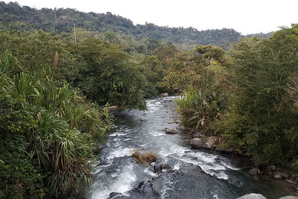 Highlights of Mindo Cloudforest