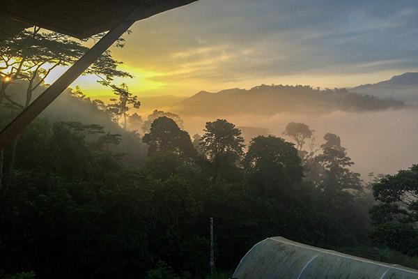 Amazon Rainforest Dry Season Tours