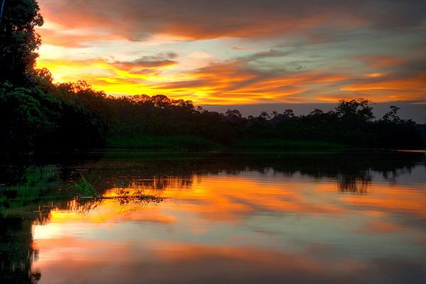 Highlights of the Ecuadorian Rainforest