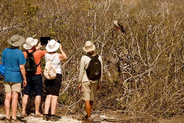 Tipping in the Galapagos Islands