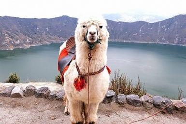 Travel information for Quilotoa Lake Ecuador