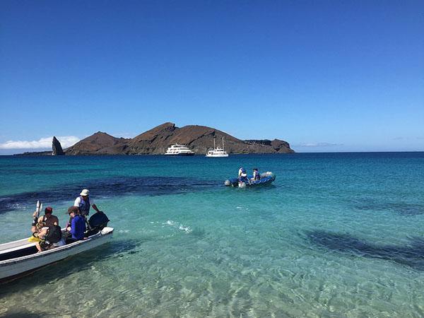 Galapagos tour options 2021