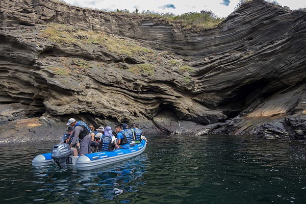 Activities in Tagus Cove Isabela