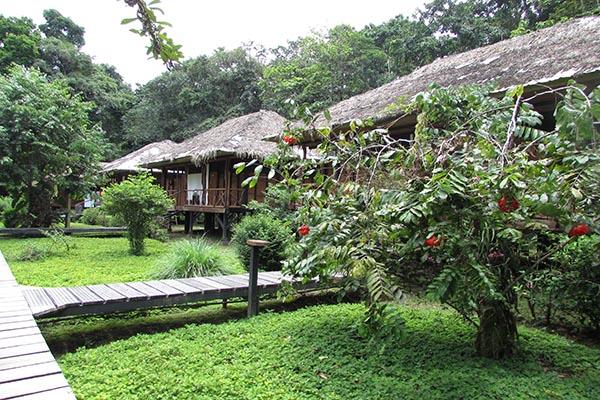 4 day luxury Amazon Lodge