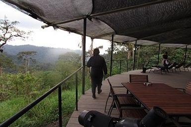 Ecuador Cloudforest luxury tours