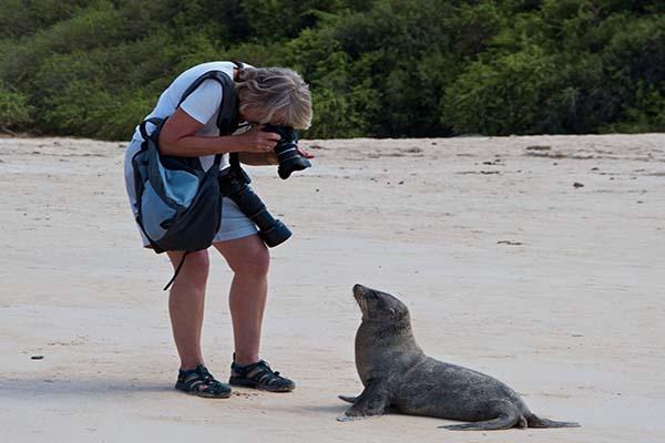 Galapagos Land Based Programs Finch Bay - Scalesia Lodge