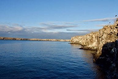 Galapagos Islands Marchena