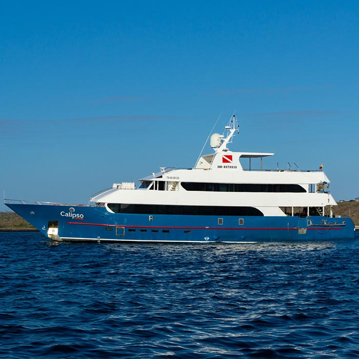 Galapagos Cruises Calipso