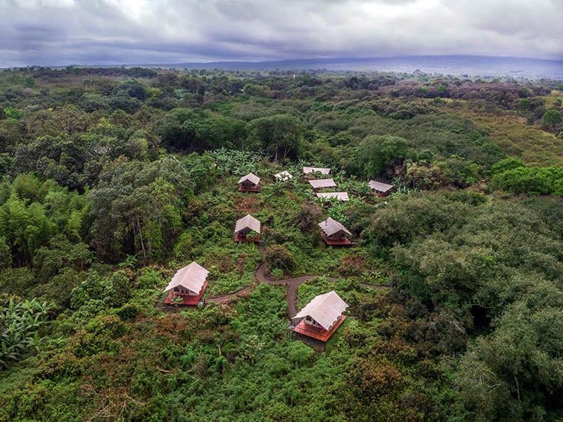 Scalesia Lodge Galapagos