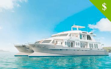 Alia Cruise discounts
