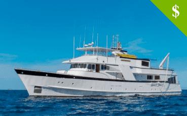 Beluga Yacht discounts