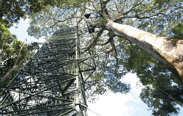 La Selva Lodge Tours
