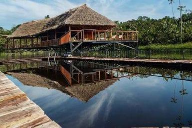 Amazon Rainforest Trips 2021