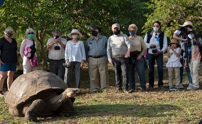 Galapagos Islands COVID protocols August 2021