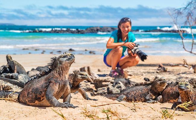 Galapagos cruises bookings